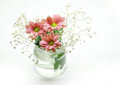 Flowers_800x549